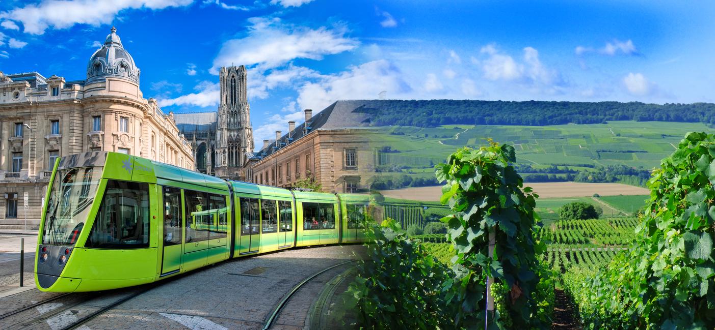 tram + vignes région de Reims